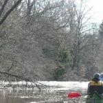 Природный заказник «Низовье реки Педедзе»