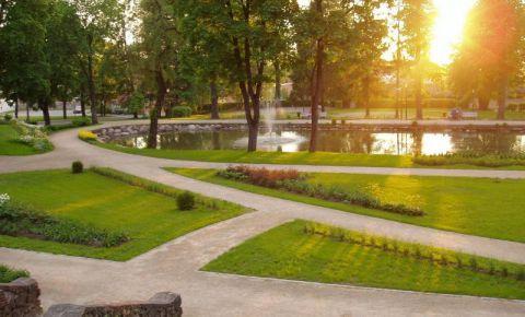 Maija parks