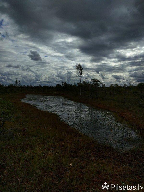 Большая тропинка вереска Кемеру