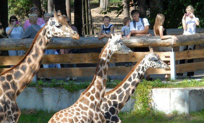 Zoologiskais dārzs