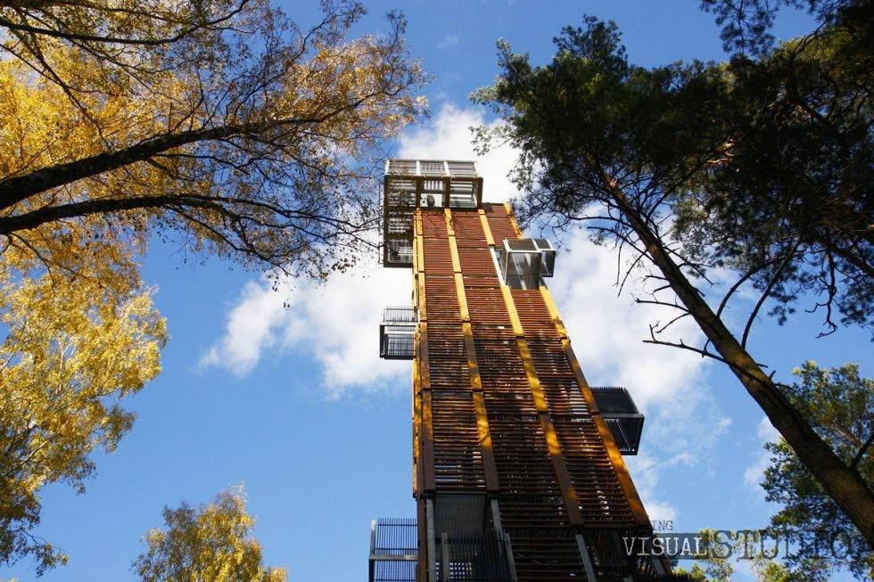 Dzintaru mežaparks