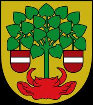 Валмиера герб